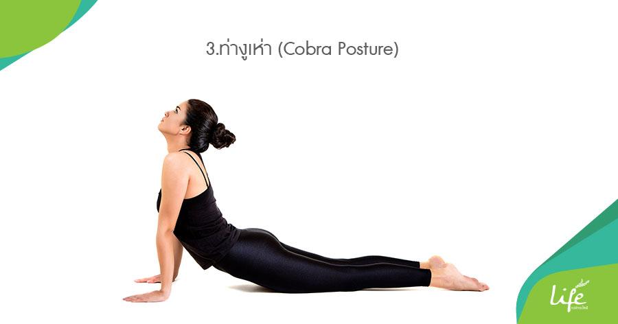 ท่างูเห่า (Cobra Posture)