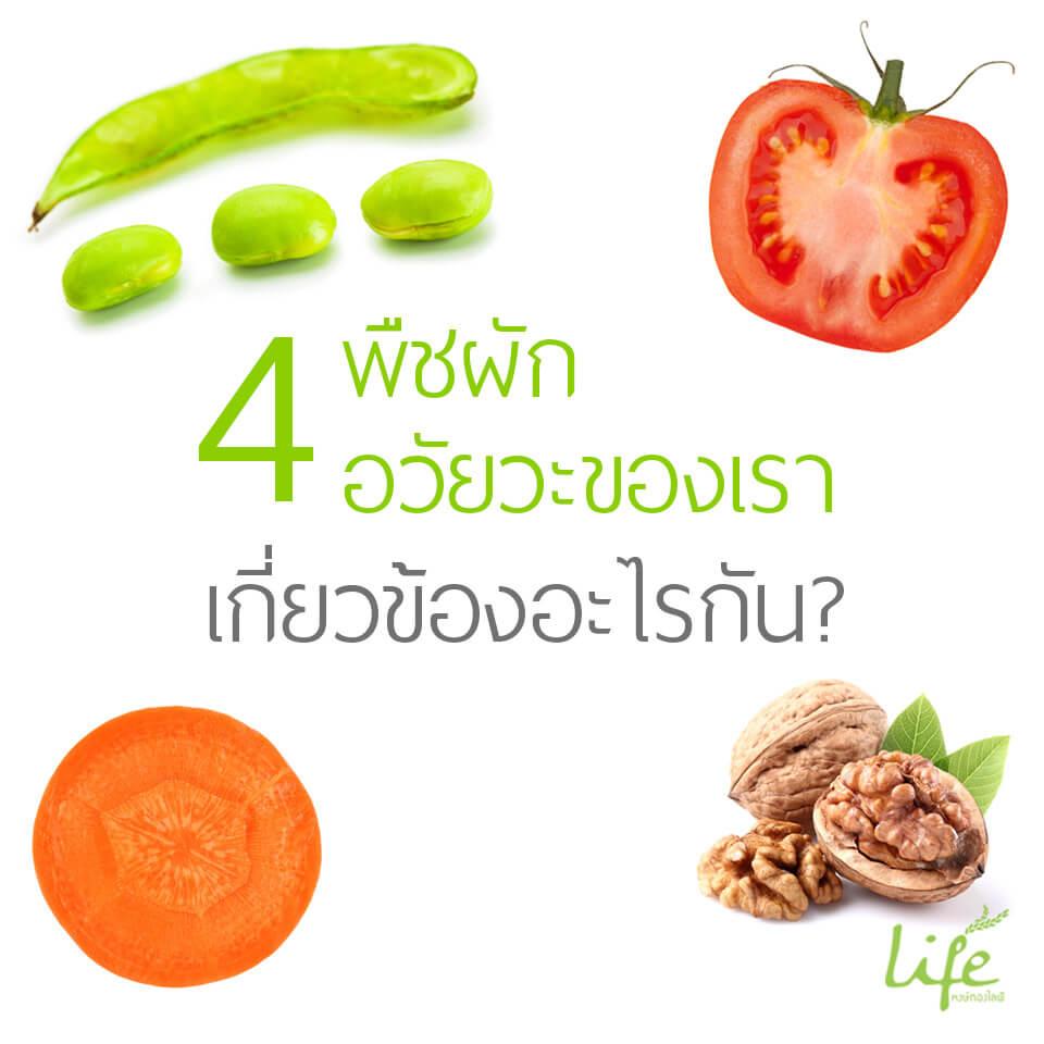 01.healthy-4พืชกับอวัยวะ