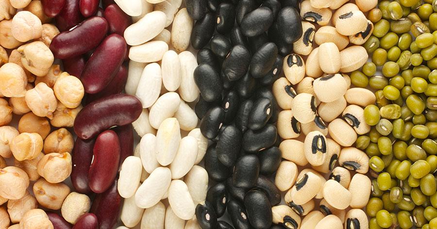 ถั่วที่เป็นฝัก หรือเป็นเมล็ด (Bean)