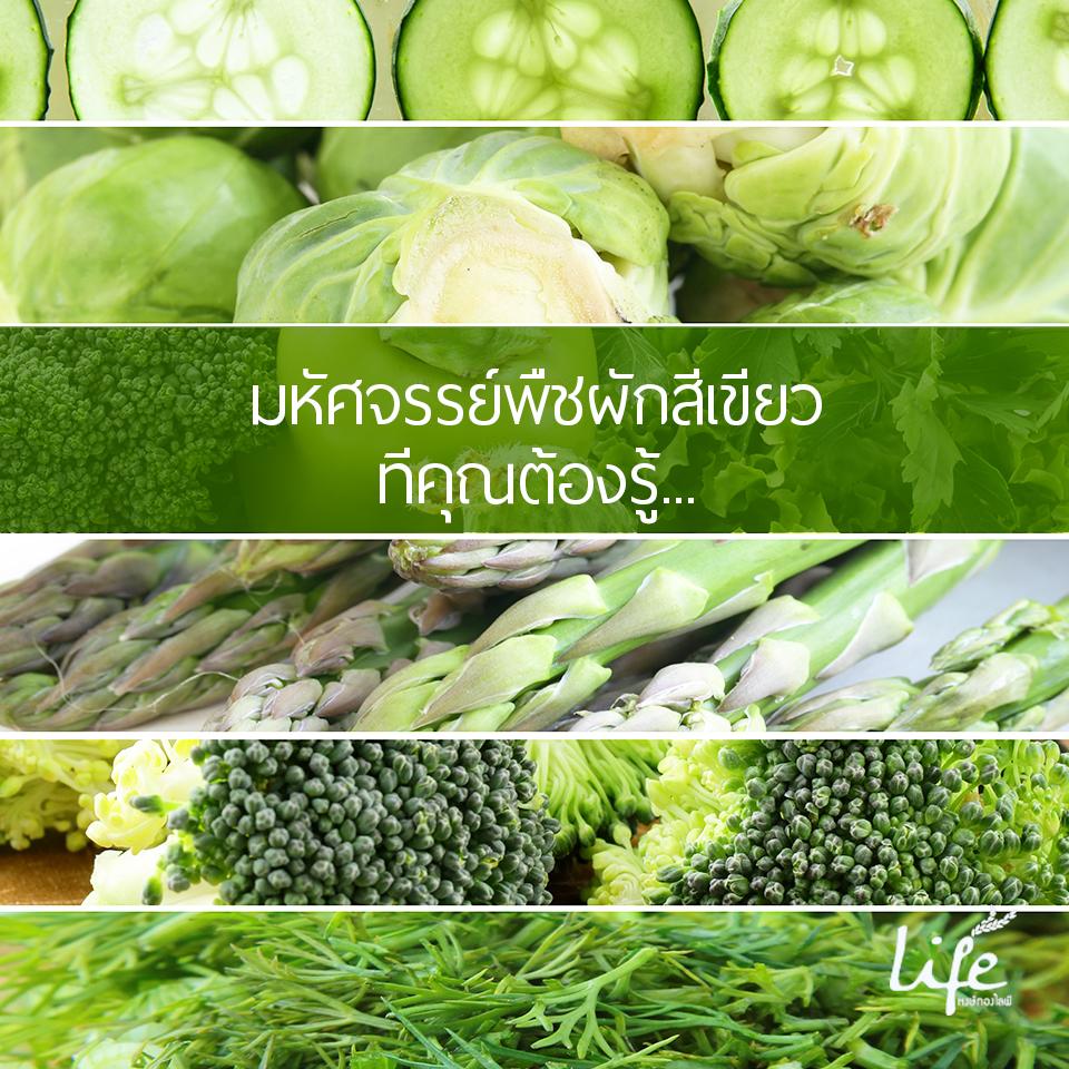 มหัศจรรย์พืชผักสีเขียว