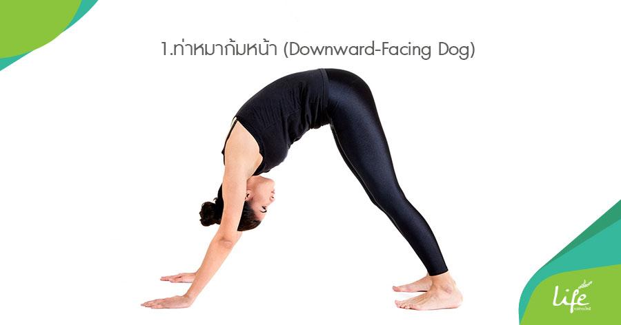 ท่าหมาก้มหน้า (Downward-Facing Dog)