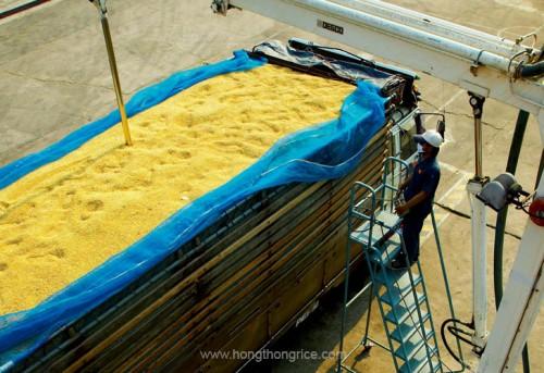 img-Hognthong-Rice-Tacnology-2